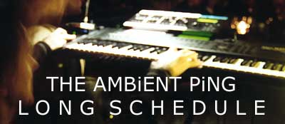 Live at The Ambient Ping - Photo by Mario Georgiou